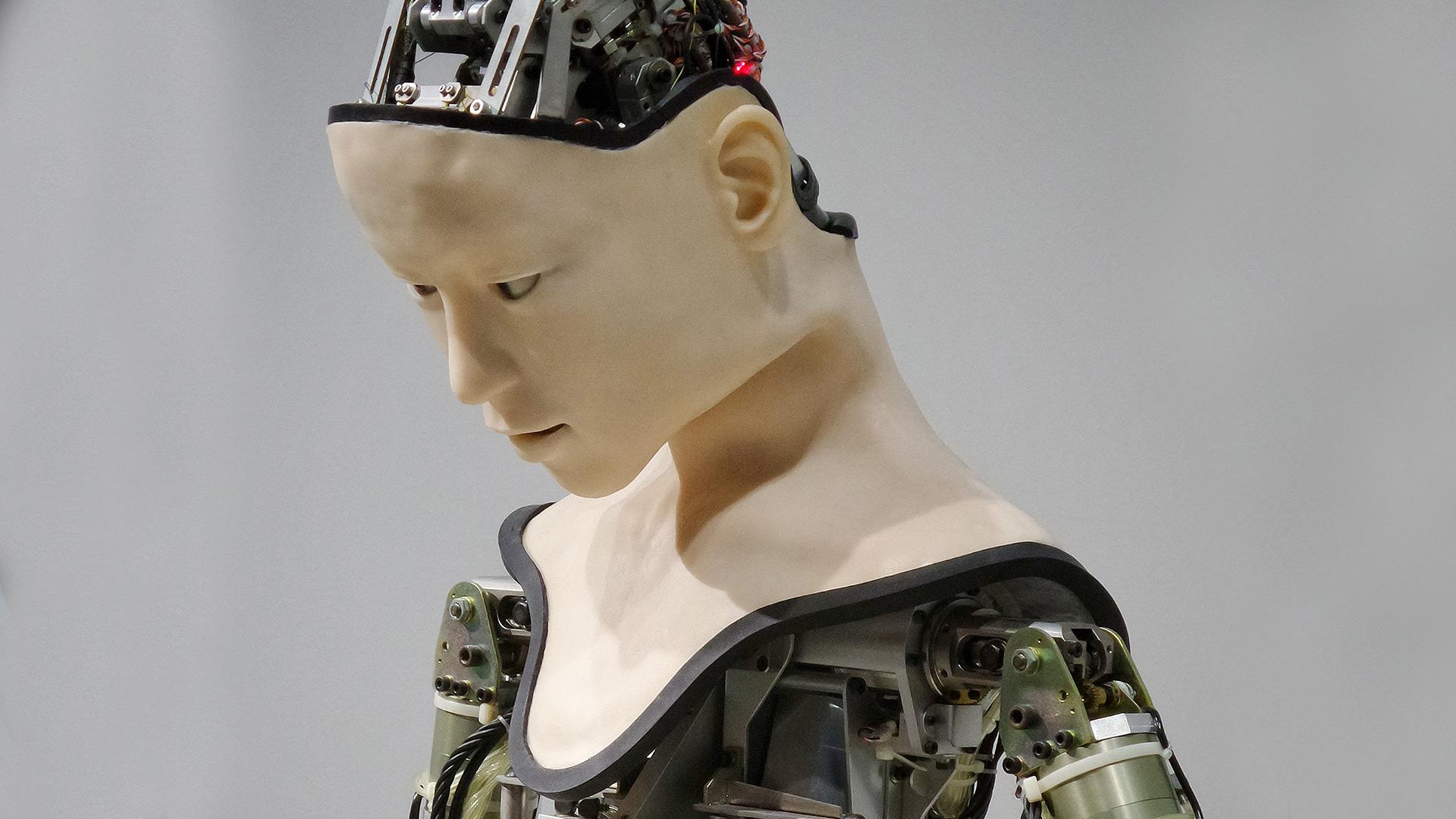 Photo robot androide - IA et monde du travail - Franck V
